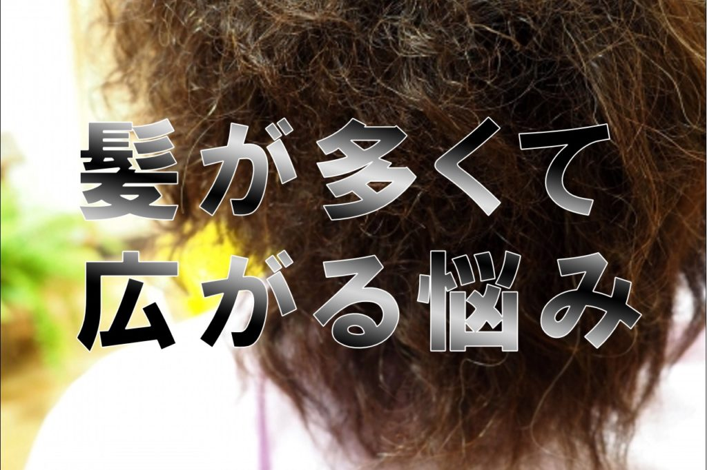 <まとめ>髪が多くて悩んでます。ボリュームダウンをしたい。そんな悩みを詳しく解説します。